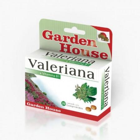 Suplemento Valeriana 20 Comprimidos